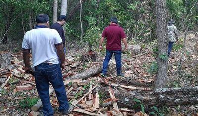 Siguen controles en zona desmontada del Parque Nacional San Luis