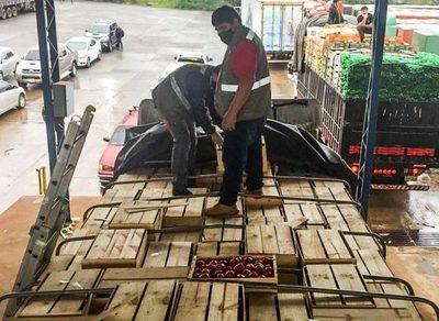 Registran aumento del comercio de productos vegetales en CDE