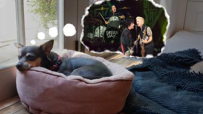 "Green Day interpreta ""Dreaming"" de Blondie"