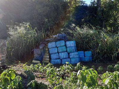Incautan 1,4 toneladas de marihuana en cercanías de la reserva Morombí