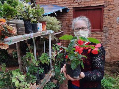 Jardines y huertas son tendencia en Misiones durante pandemia