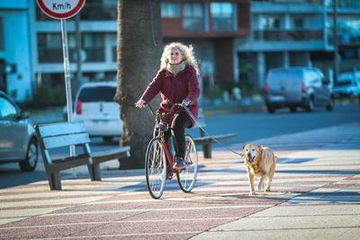 Perros ayudan a adultos mayores a mantenerse activos