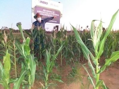 Agricultura sustentable da esperanza a productores de San Pedro