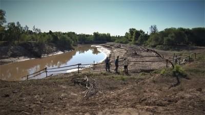 Productores de Margariño hacen cruzar el ganado por el rio en busca de tierras con pasto