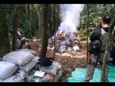 SENAD INCAUTA MÁS DE 3000 KILOS DE MARIHUANA Y DESTRUYE CAMPAMENTO EN MARIA AUXILIADORA