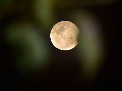 La luna de fresa podrá ser vista la próxima semana
