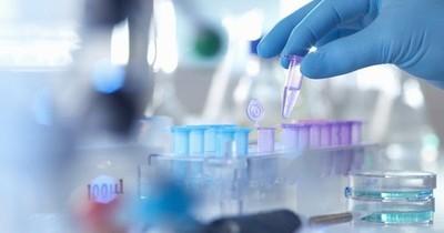 Científicos argentinos desarrollarán vacuna contra el coronavirus