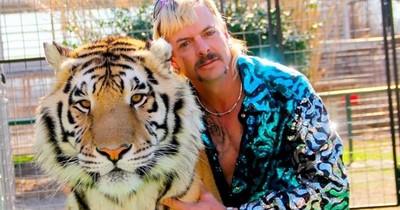 """Nuevo episodio para """"Tiger King"""" de Netflix: Protagonista pierde su zoo"""