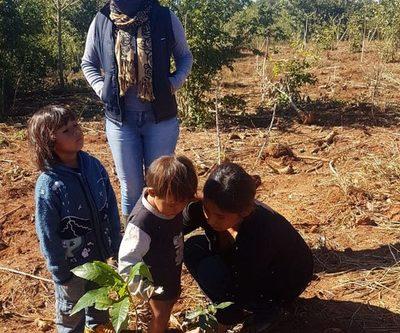 ITAIPU entrega 500 plantines a comunidad indígena de Yguazú – Diario TNPRESS
