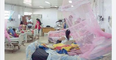 Se confirman 4 muertes por dengue y más de mil casos