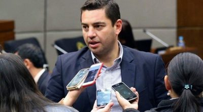 Pedro Alliana es reelecto para presidir Cámara Diputados
