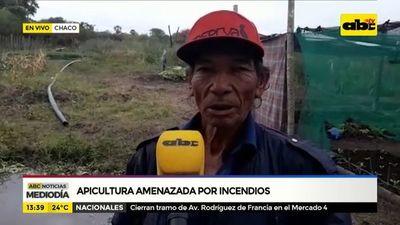 Apicultura amenazada por incendios en el Chaco