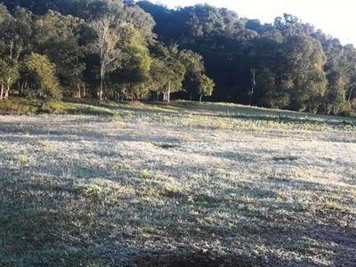 Encarnación registra las primeras heladas y el día más frío del 2020