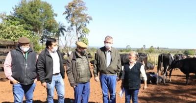 Productoras lecheras reciben 52 vaquillas preñadas como parte de una ayuda estatal