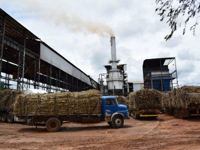 Cañicultores se manifestarán por retraso de la zafra en planta de Petropar