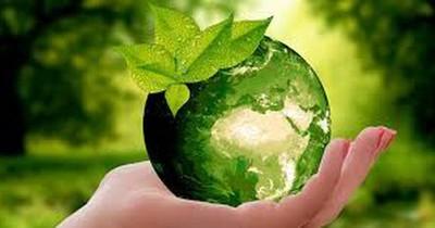 El Día Mundial del Medio Ambiente fue celebrado de forma digital
