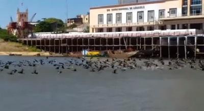 Los ríos Paraná y Paraguay registran leve aumento en sus niveles