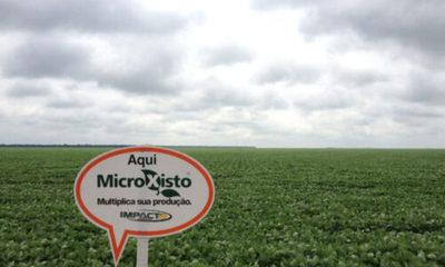» Glymax y Microxisto capacitan sobre nutrición y fisiología de plantas