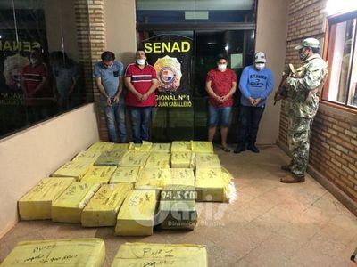 Senad incauta más de media tonelada de marihuana en Desarmadero en Pedro Juan