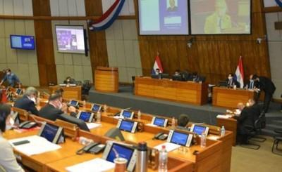 Diputados también aprueba ley que cancela facturas de ANDE y ESSAP