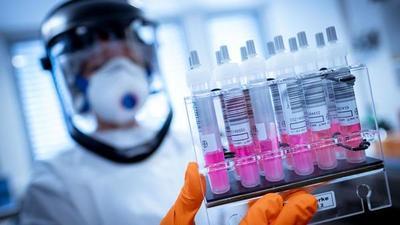 La OMS ve posible tener vacunas contra la COVID-19 para inicios del año próximo