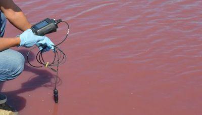 Técnicos descartan preliminarmente vertidos de efluentes como causa del agua roja en el Chaco