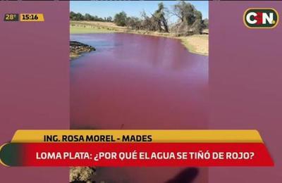 Loma Plata: ¿Por qué el agua se tiñó de rojo?