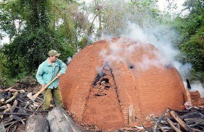 Más de 200 hornos para elaboración de carbón en el parque San Rafael