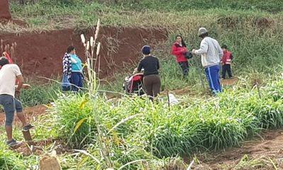 Supuestos «sin tierras» invaden propiedad privada