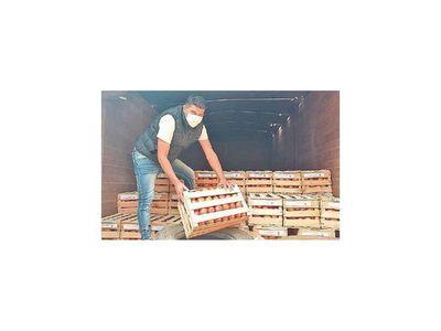 Mejoran presentación del tomate y logran  elevar precios