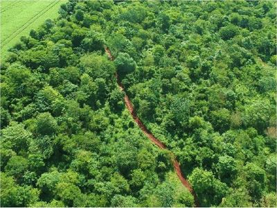 Itaipú actualiza normativas para defender áreas protegidas