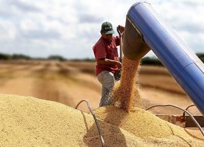 Brasil facilita importaciones de productos AGROPECUARIOS desde el Paraguay