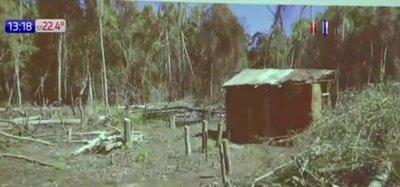 Aguda deforestación en Puerto Indio