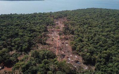 Itaipú denuncia invasión de área protegida – Diario TNPRESS