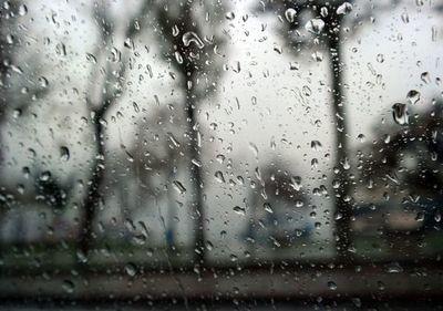 """Lluvias en la región oriental permiten """"volver a respirar"""" a muchos productores"""