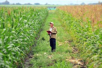 Martes, curso de Educación Financiera en Futuros y Opciones para el agro