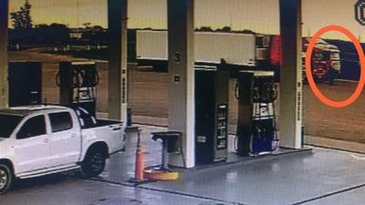 Dos detenidos por intentar transportar cocaína en camión frigorífico hasta Chile