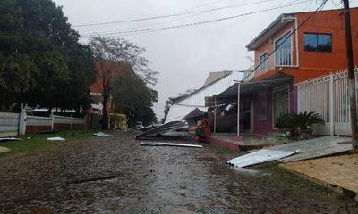 Caída de árboles, casas destechadas y vuelco de vehículo por la tormenta – Diario TNPRESS