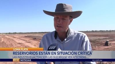 FALTA DE LLUVIAS REPERCUTE EN EL SECTOR PRODUCTIVO DEL CHACO