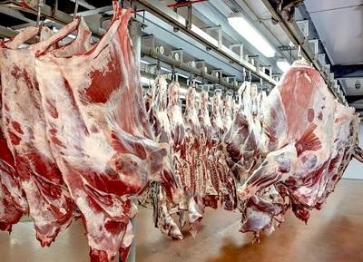 Frigoríficos exportadores procesaron 163.018 bovinos en junio