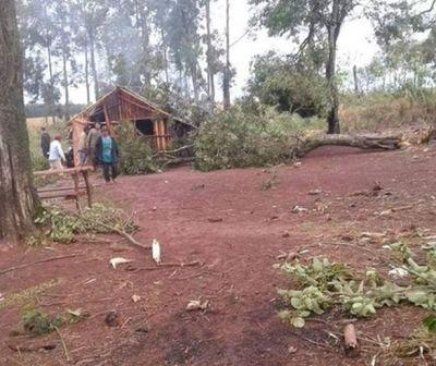 Niña de 5 años murió luego de que un árbol se le cayera encima en Itapúa