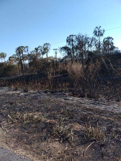 Quemazón destruye cables de Copaco y deja sin internet a chaqueños