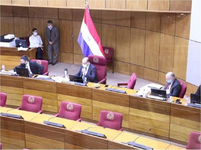 Senado se ratifica en medidas de racionalización del gasto público