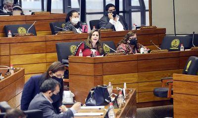 Diputados interpelarán a Villordo, titular de la ANDE