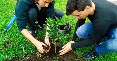 """Hermosearán Asunción con la campaña ambiental """"Adopta un naranjo"""""""
