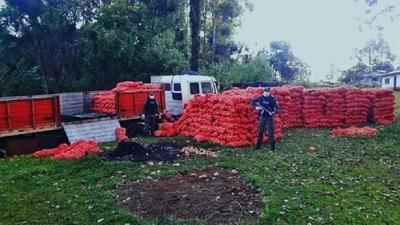 Masivo CONTRABANDO de cebollas desde la ARGENTINA