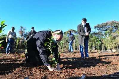 Itaipú recupera zona invadida e inicia reforestación