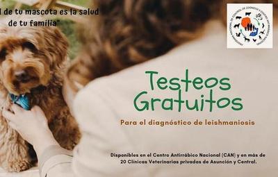 Ofrecen testeos gratuitos para el diagnóstico de leishmaniasis