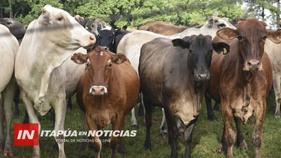 EXTENSIÓN DE LA CUENCA LECHERA EN ITAPÚA EXIGE TOMAR MEDIDAS SANITARIAS