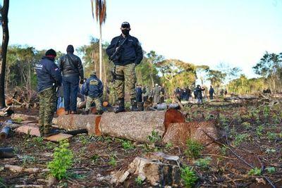 En cuestión de horas, jueza de Itakyry libera a depredadores de reserva de bosque